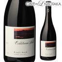 【送料無料】コールドストリーム ヒルズ ピノ ノワール ヤラヴァレー 2017 赤ワイン 辛口 オーストラリア Coldstream Hills Pinot Noir..