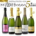【送料無料】ソムリエとソムリエールが泡好きのために選んだ厳選シャンパン入り泡5本セット ワインセット(クール代金別途)