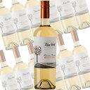 【ポイント10倍】ソーヴィニヨンブラン レセルバ テロワール/テラノブレ 750ml×12本 (白ワイン)