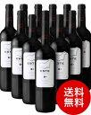 エステ・ティントボデガス・アルト・アルマンゾーラ12本セット(赤ワイン)(同梱不可・送料無料)(代引き手数料・クール便は別途費用が掛かります)