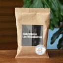 ●【100g】【COE】グァテマラ・ラス・マカダミアス農園COE6位(GUATEMALA Las MacadamiasA)(スペシャルティコーヒー)(カップ・オ...