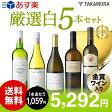 【送料無料】【第15弾】1本あたり1059円でこの充実度!金賞白ワインも入ってる!!厳選5本!白ワインセット(追加7本同梱可)(代引き・クール便別途)[T][A][P]