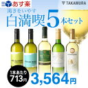 【第81弾】1本驚きの713円!いつでもやっぱり白満喫!!渇きをいやす5本 白ワインセット(送料別・