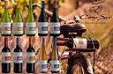 送料無料●10● コノスル・ビシクレタ・レゼルバ・10本ワインセット【飲み比べS リストつきS 送料無料S】