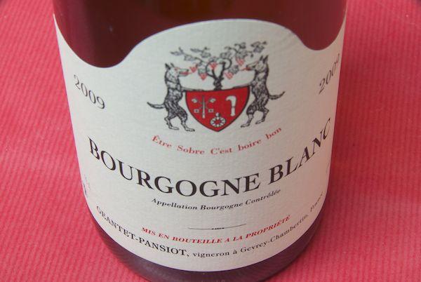 Giant Pancho/Burgundy/Blanc [2009]