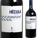 【マグナムボトル】 ヘクラ [2009] ボデガス カスターニョ (マグナムボトル 1,500ml)