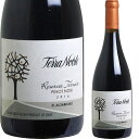 テラノブレ ピノ・ノワール レゼルバ・テロワール [2014] 【あす楽対応_関東】チリワイン