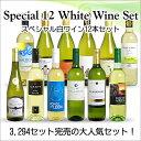 【送料無料】 <第46弾> スペシャル白ワイン12本セ