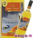 ドイツの冬の風物詩温めて飲むフルーツワイン