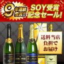 【100セット限定】うきうき厳選 SOY9年連続受賞...