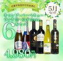【5月セット】初夏の季節!キャンプ・バーベキュー・ランチ会・女子会etc.楽しい仲間とハッピー飲み比