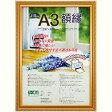 賞状額 A3 JIS 金ケシ 樹脂製 フ-KWP-40/N ナカバヤシ 02P03Dec16