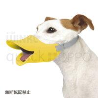 quack_OPPO_L