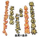【プロ野球 阪神タイガースグッズ】金本知憲ヒッティングマーチ(応援歌)ワッペン