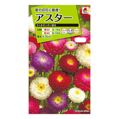 【A】タキイ種苗 花種 アスター ちくまポンポン混合 メール便対応 (B03-014)