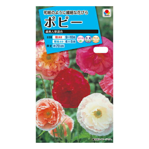 【A】タキイ種苗 花種 ポピー 虞美人草混合 メール便対応 (B05-021)