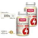 [2個セット]L-カルニチン 500mg 100粒(リキッド...