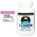 カルニチン サプリメント L-カルニチン 250mg 120...