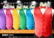 ベスト カラーベスト 蝶ネクタイ 2点セット ステージ衣装 ダンス衣装 カラオケ衣装 舞台衣装 演奏 吹奏 赤・青・緑・黄・ピンク・紫の6色 S〜5Lサイズ 【商品番号:27vt3】