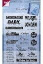 【6410-0363】Joy! Crafts/ジョイ・クラフツ/Clear Stamps/クリアスタンプ/Baby words スクラップブッキング クラフト ハンドメイド作品に! 02P03Dec16