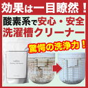 【国産】約4回分 酸素系粉末 洗濯槽クリーナー ヨゴれごっそ...