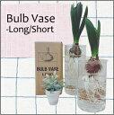 水栽培 アクアカルチャーベース 球根ベース サイズ選択可: BULB VASE おしゃれ かわいい アメリカン 雑貨 欧米雑貨 かっこいい