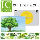 ICカードステッカー ICカードシール スイカ Suica PASMO パスモ ICOCA TOICA Edy nanaco 緑 大自然 ナチュラル デザイン 葉っぱ グリーン エコ eco 和柄