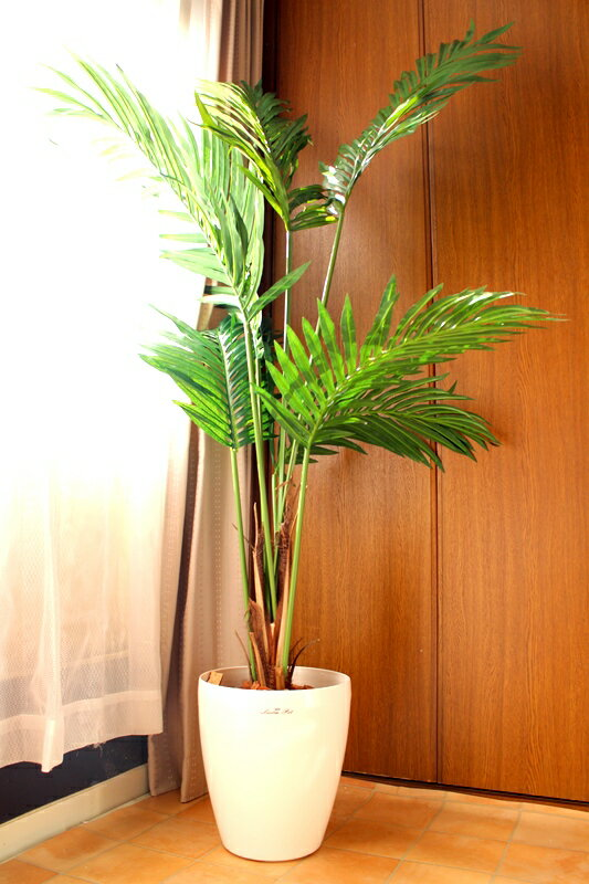 【ケンチャヤシ】【人工観葉植物】【1.5m】【送料無料】【触媒加工済】