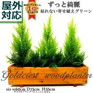 ランキング フェイクグリーン ゴールドクレストウッドプランター ウッドプランター