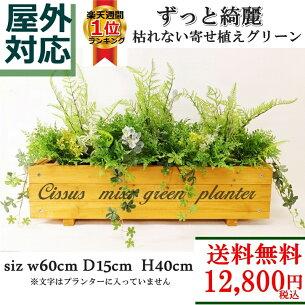 シサスミックスグリーンプランター イングリッシュ ガーデン フェイクグリーン プランター シサスガーランド