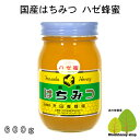 国産はちみつ生産直売 ハゼ蜂蜜600g【純粋非加熱】広島県産・国産蜂蜜