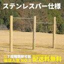 【二連】 木製 鉄棒 (大) 無塗装 ステンレスバー 防腐加...