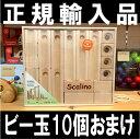 スカリーノ 基本セット SCALINO 正規輸入品
