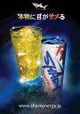 正規品 送料無料 SHARK ENERGY DRINK シャークエナジードリンク 缶 250ml 24本セット販売 ケース販売 箱買い 栄養ドリンク 正規輸入代理店品正規輸入品
