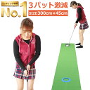 【圧倒的な高評価レビュー4.4点!】 3m Danact パターマット (長さ3m / 横幅45cm) ゴルフ 練習 ゴルフ練習用品 ゴルフ練習マット パター 練習 マット 距離感を身に付ける 実践型パターマット