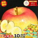 【予約】送料無料 超希少!ぐんま名月 青森 りんご 家庭用 10キロ箱りんご 訳あり 10kg箱 送