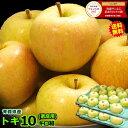 【送料無料】青森 りんごトキ 10キロ箱ご家庭用 旬のもぎた...
