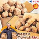じゃがいも 送料無料 5kg 無農薬栽培男爵 メークイン 品種が選べるジャガイモ岩手県軽