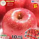 【送料無料】あす楽 青森りんご ご家庭用 サンふじ 10キロ箱りんご ご家庭用訳あり 10kg箱青森
