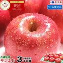 あす楽【クール便対応】青森りんご ご家庭用 サンふじ 3キロ箱りんご 家庭用訳あり 3kg箱青森 林
