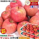 りんご 訳あり 10kg箱【クール便対応】りんご サンふじり...