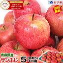 【送料無料】あす楽 青森りんご 訳あり サンふじ 5キロ箱りんご 訳あり 5kg箱青森 林檎 5キロ
