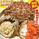 青森の毛蟹 トゲクリカニ 1kg 送料無料かにミソが美味!内子入り メス1キロ(約6杯〜8
