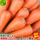 キャッシュレス5%還元【定期購入】無農薬にんじん ジュース用に最適産地が選べる無農