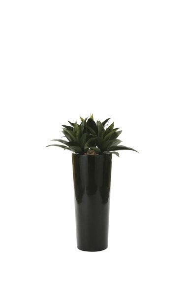 【送料無料・ポイント10倍】《アートグリーン》《人工観葉植物》光触媒 光の楽園 ドラセナ