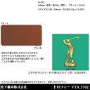 トロフィー VTX3702 ゴルフ男【松下徽章】【文字刻印代無料】【コンペ景品】