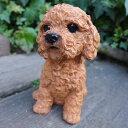 犬の置 プードル(茶) いぬ イヌ 動物 9686H オーナメント ガーデン オブジェ 庭 ガーデニング インテリア 雑貨 マスコット リアル 陶器 ディスプレイ