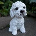 犬の置物 プードル ホワイト いぬ イヌ 動物 9688H オーナメント ガーデン オブジェ 庭 雑貨 ガーデニング インテリア 雑貨 マスコット リアル ディスプレィ