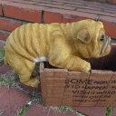 犬の置物 ブルドック いぬ イヌ 動物 3703-02 オーナメント ガーデン オブジェ 庭 ガーデニング インテリア 雑貨 マスコット リアル 陶器 ディスプレイ
