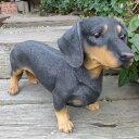 犬の置物 ダックスフンド(L) ブラック・タン 62QY いぬ イヌ 動物 オーナメント ガー